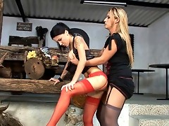 Nasty chick eagerly blowing t-girl's pole before getting her twat loosened