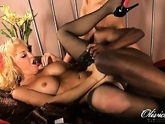 Horny transsexual getting her brains fucked out by a black dude