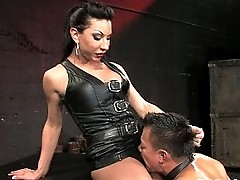 Ariel Everitts, hot TS porn star fucks slave in tha ass